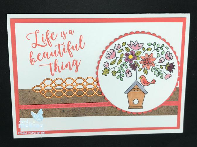 bird spring card