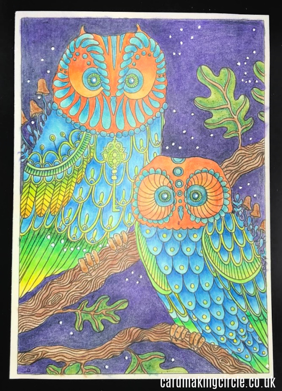 An owl illustration from Daydream by Hanna Karlzon.  coloured with Polychromos coloured pencils.